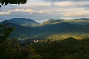Costa Rica koffiegebied