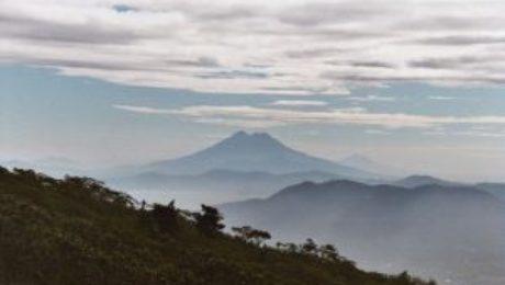 Guatemala Denf